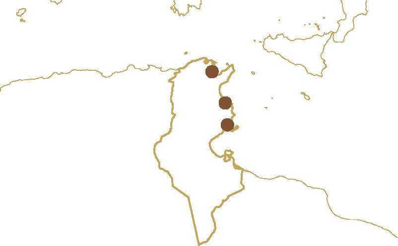 Carte de la Tunisie avec les boutiques Maison Turki